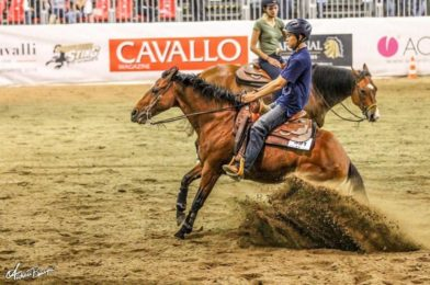 มืออาชีพยังงง นักขี่ม้าไทยเก่งกาจมากความสามารถจริงๆ
