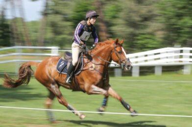 ทีมนักขี่ม้า การเปลี่ยนแปลงด้านความปลอดภัยในการกวาดตามแผนหลังจากสอบสวนผู้ขับขี่ม้าเสียชีวิต