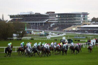ห้าอันดับที่ดีที่สุด การแข่งม้าที่ได้รับการสนับสนุนที่ล้นหลาม